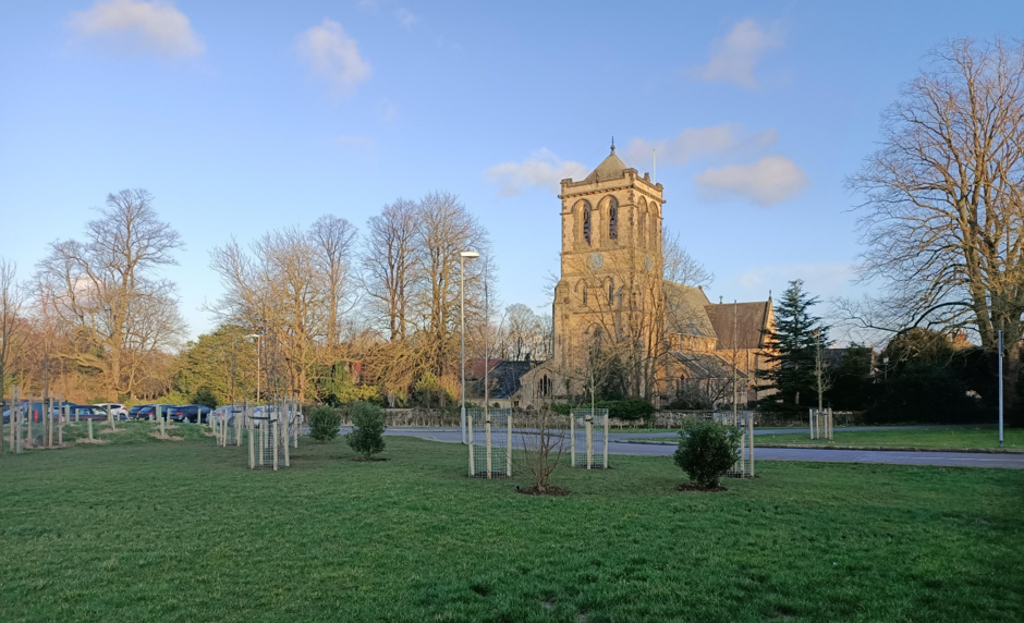 Church Fields Sponsored Trees
